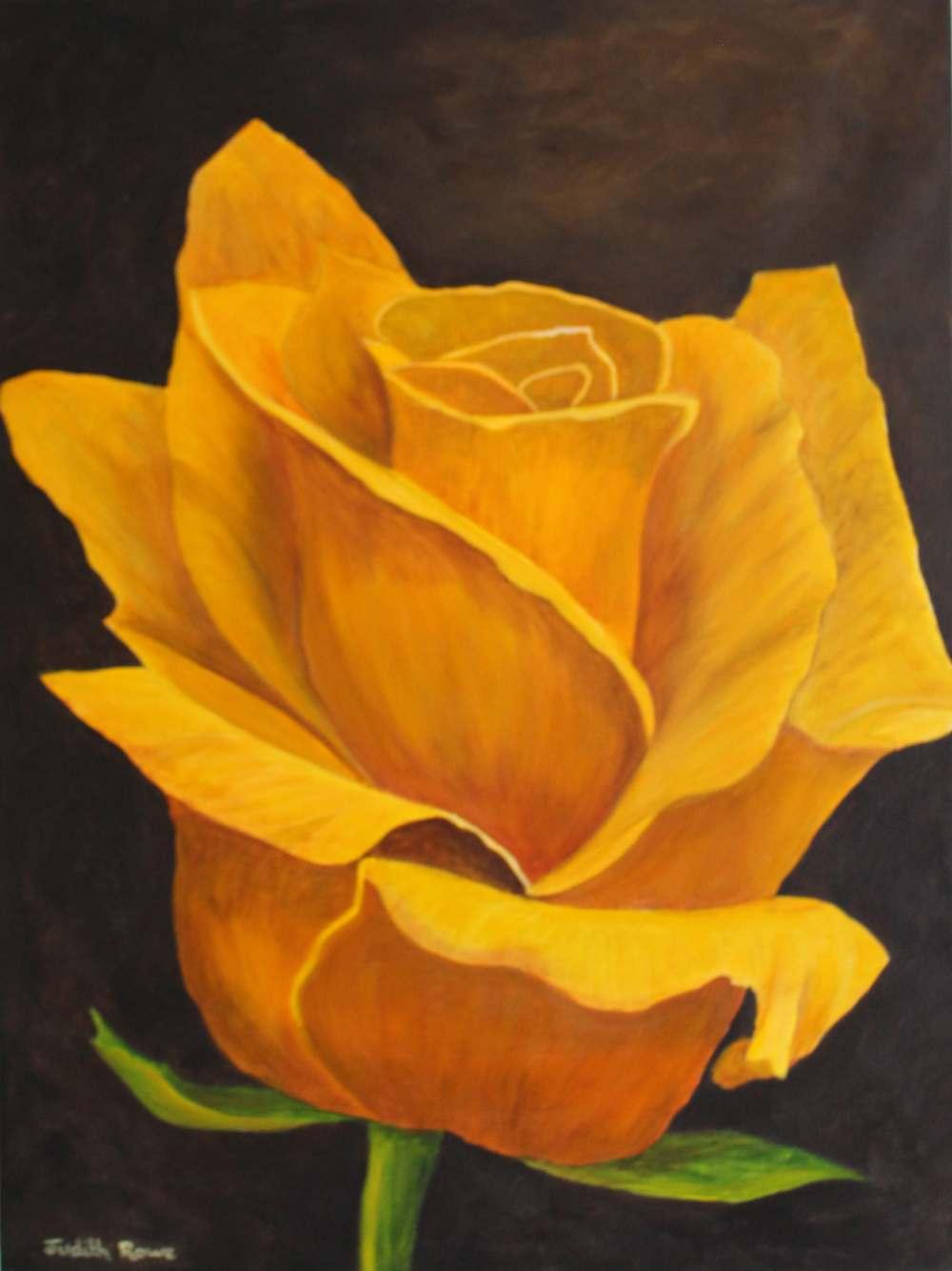 Admiral Little Box Login >> Judith Rowe - Yellow Rose - SAA