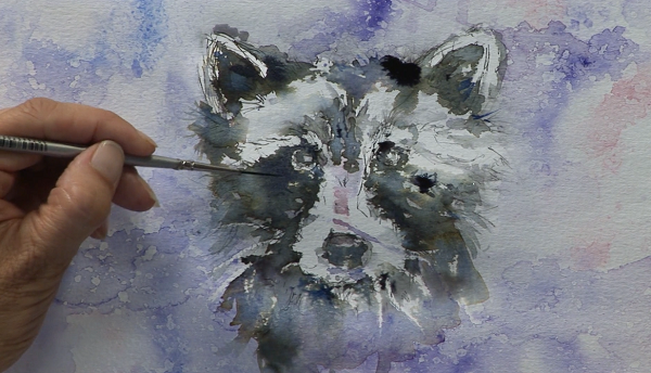 Exclusive – Resting Raccoon in Watercolour Mixed Media with Jo Allsopp