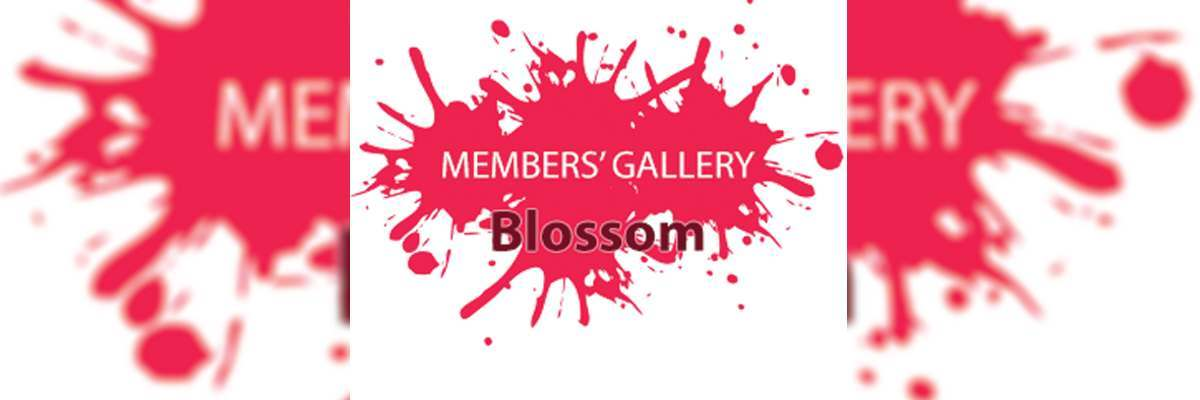 Blossom (March 2020)