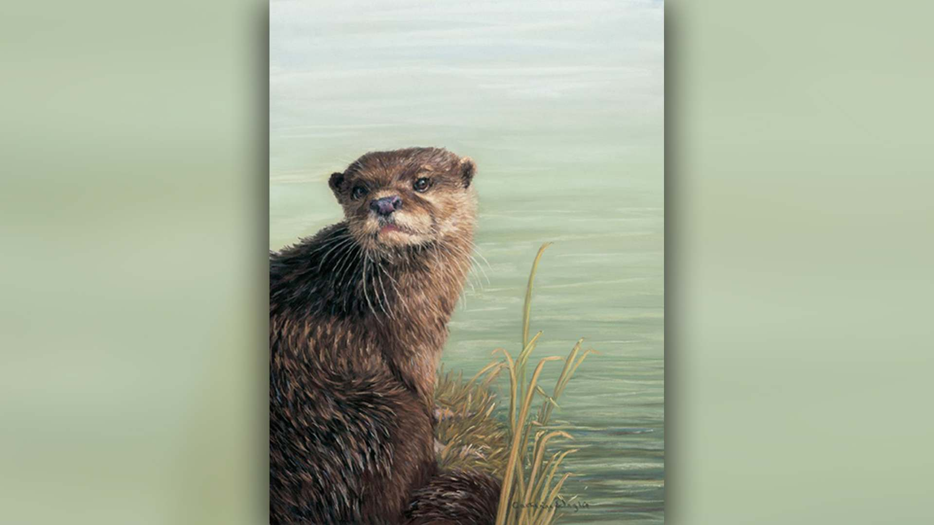 SAA Live – Cath Inglis Workshop – Otter in Pastel
