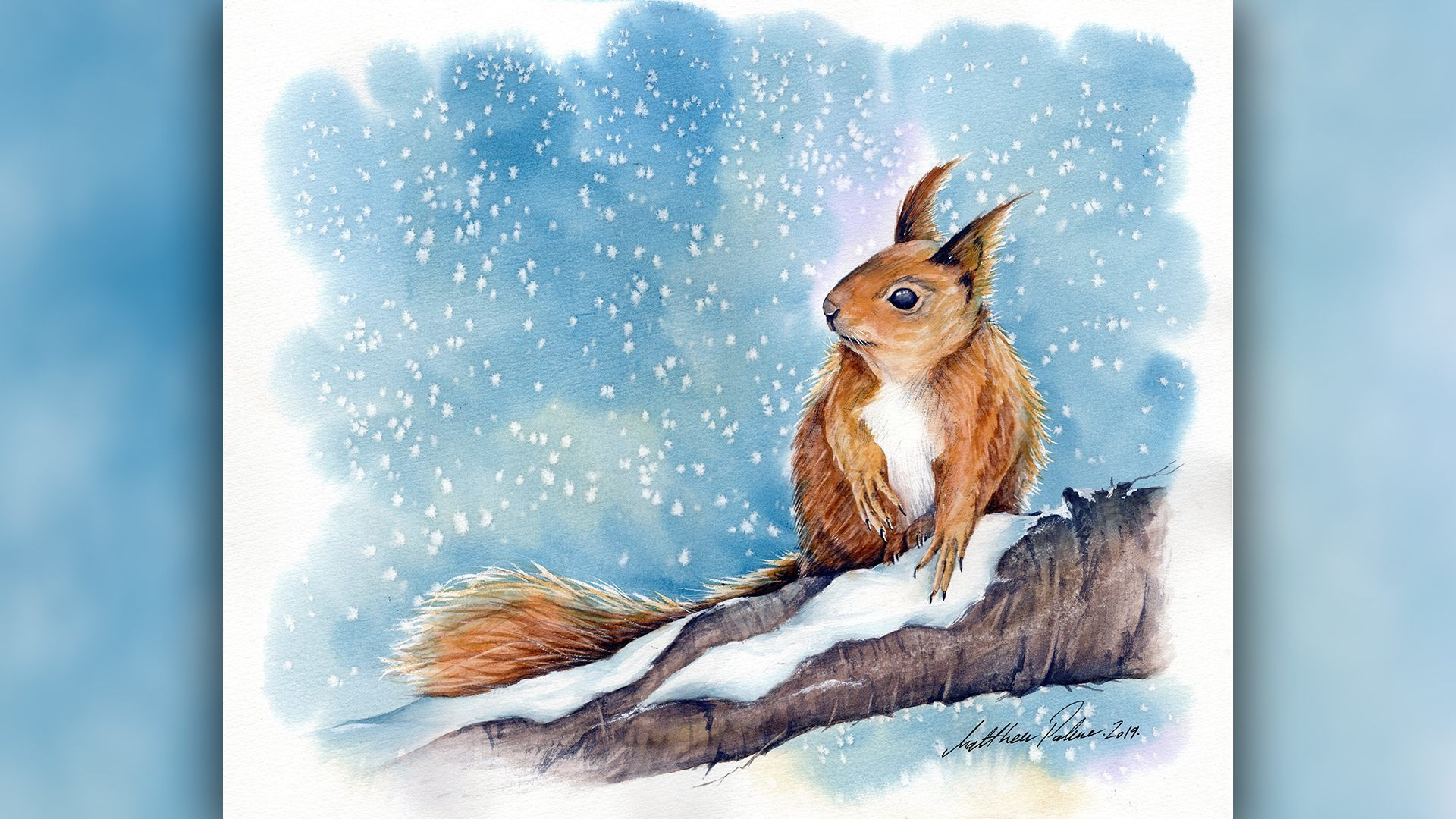 SAA Live – Matthew Palmer Workshop – Winter Squirrel in Watercolour