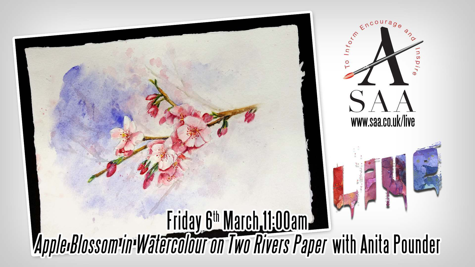 Live with Anita Pounder – Apple Blossom in Watercolour
