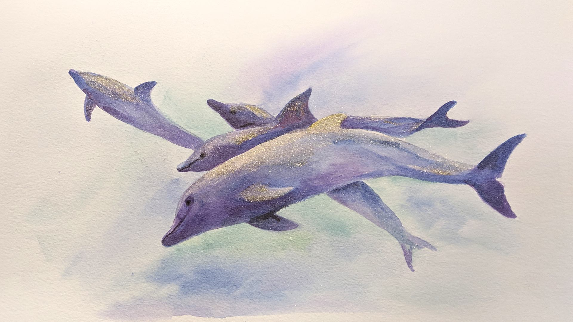 Live with Anita Pounder – Diving Dolphins in Derwent Metallic Watercolours