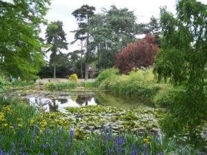 Water scene, Kew Gardens