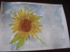 sunflower in a summer sky