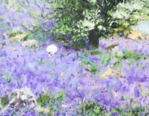 Sheep in bluebells at Rannerdale