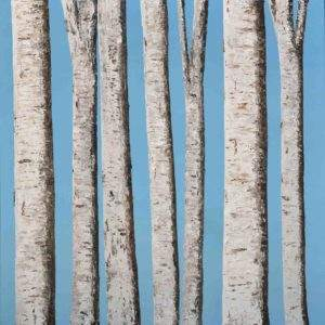 Against a Summer Sky: Silver Birches 6