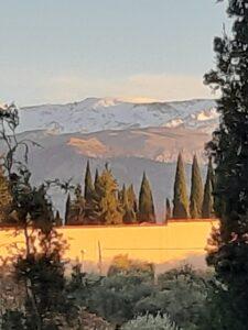 Alhambra Palace Granada 2019