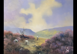 No. 3 - Wonderful  memories of the NYMNP with Sheep