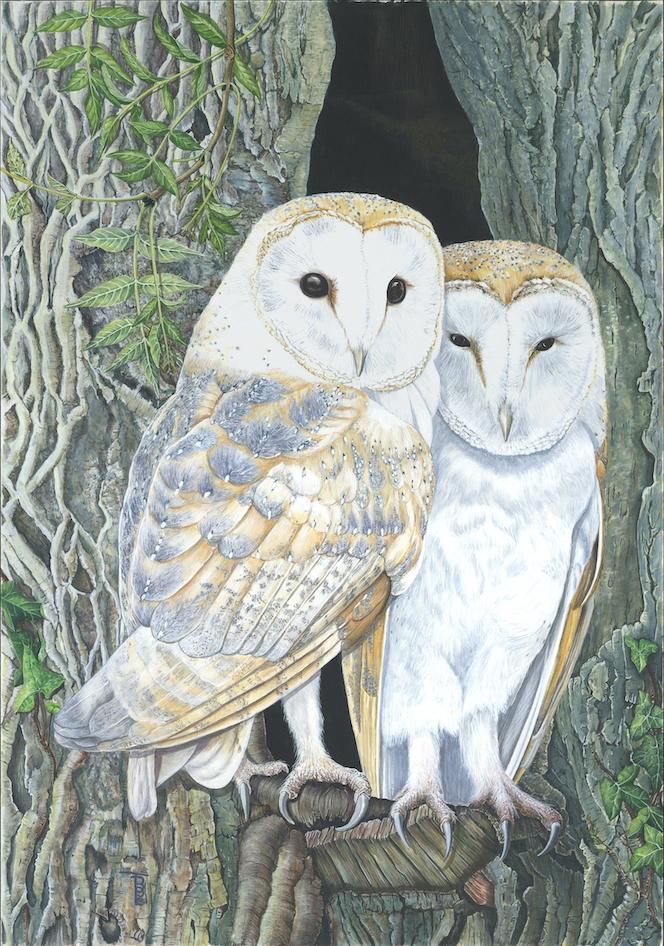 Exhibition Wildlife Art (EWA)
