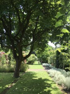 The Courts Garden Holt